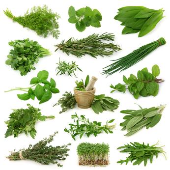herbes aromatiques de saison le gourmand du dimanche. Black Bedroom Furniture Sets. Home Design Ideas
